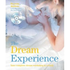 'The dream Experience' by Brenda Mallon