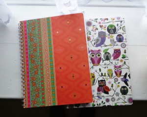 My two most recent journals - they have to look and feel beautiful!