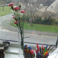 carnations-coloured-pens-and-creativity
